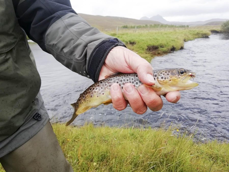 James Curley fly fishing, Scottish Highlands