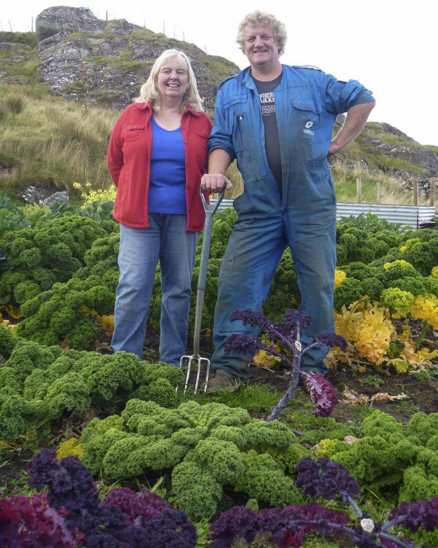 Croft 16 produce, Scourie