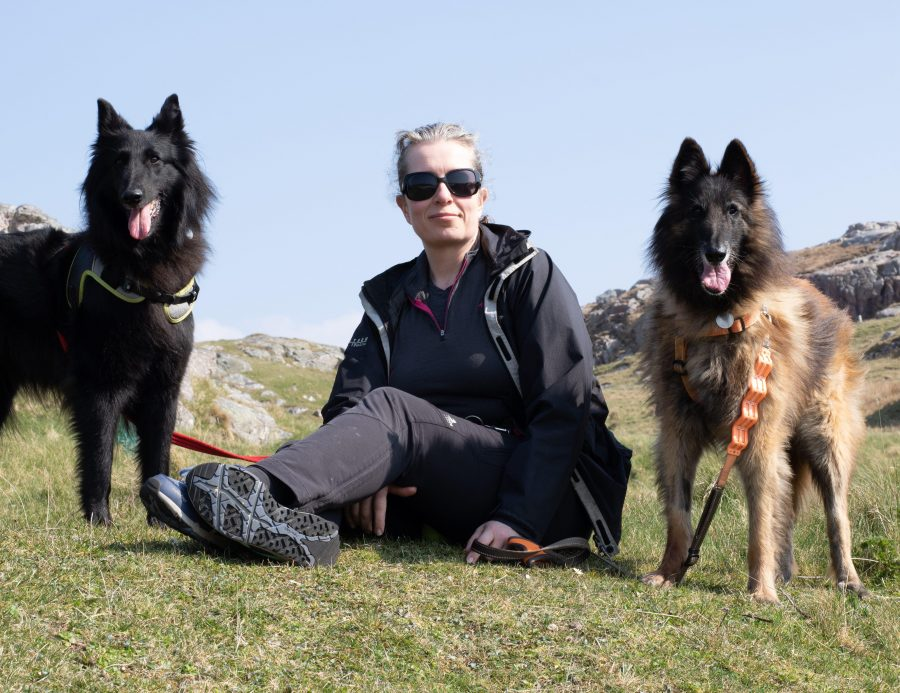 Belgian Shepherds in the north west highlands of Scotland